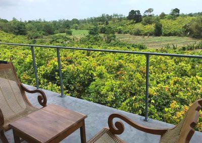1 BoBos Cinnamon Land Duwabedda Sri Lanka