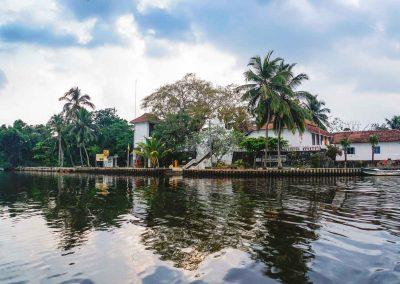 Klassisch-Sri-Lanka-8-Tage-Galerie-Srilankareisen-3