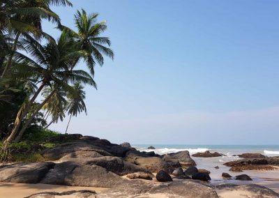 Srilankareisen-Header-img